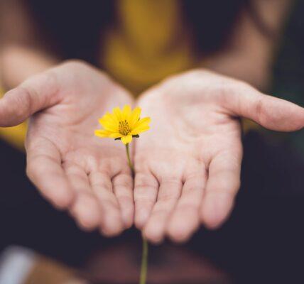 pielęgnacja przesuszonych i zniszczonych dłoni